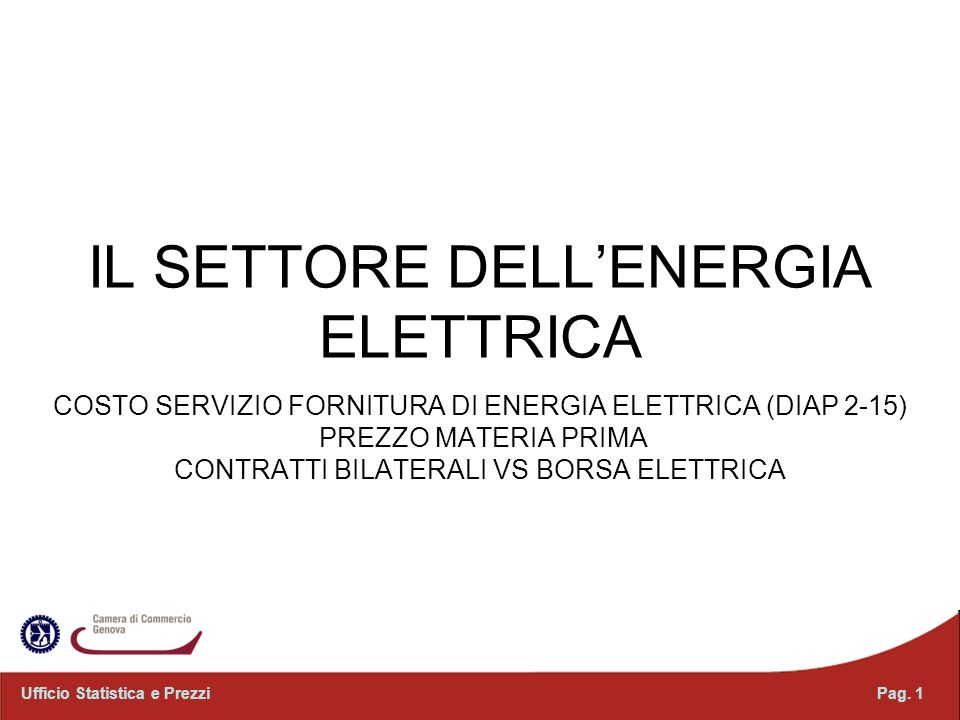 IL SETTORE DELL'ENERGIA ELETTRICA