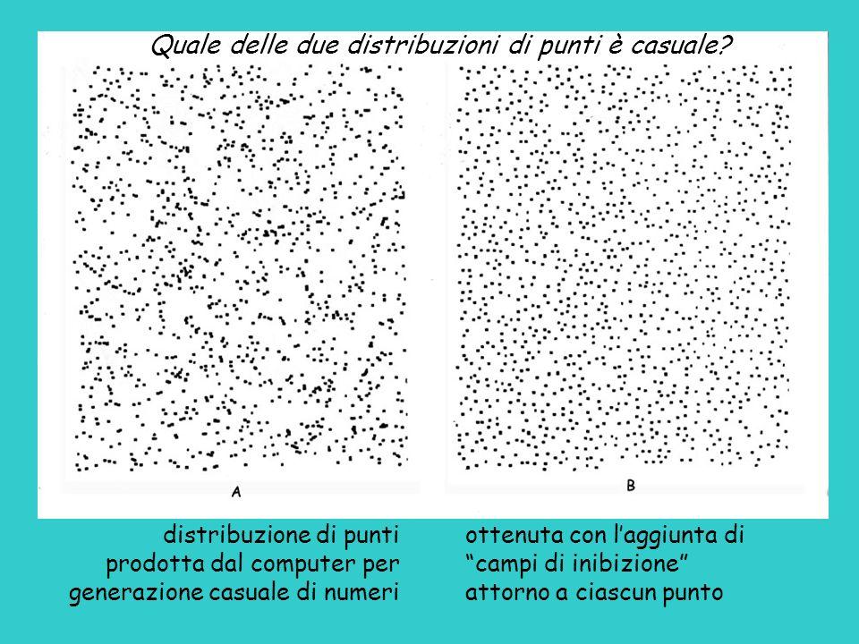 Quale delle due distribuzioni di punti è casuale