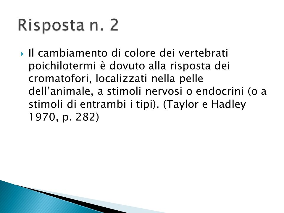 Risposta n. 2