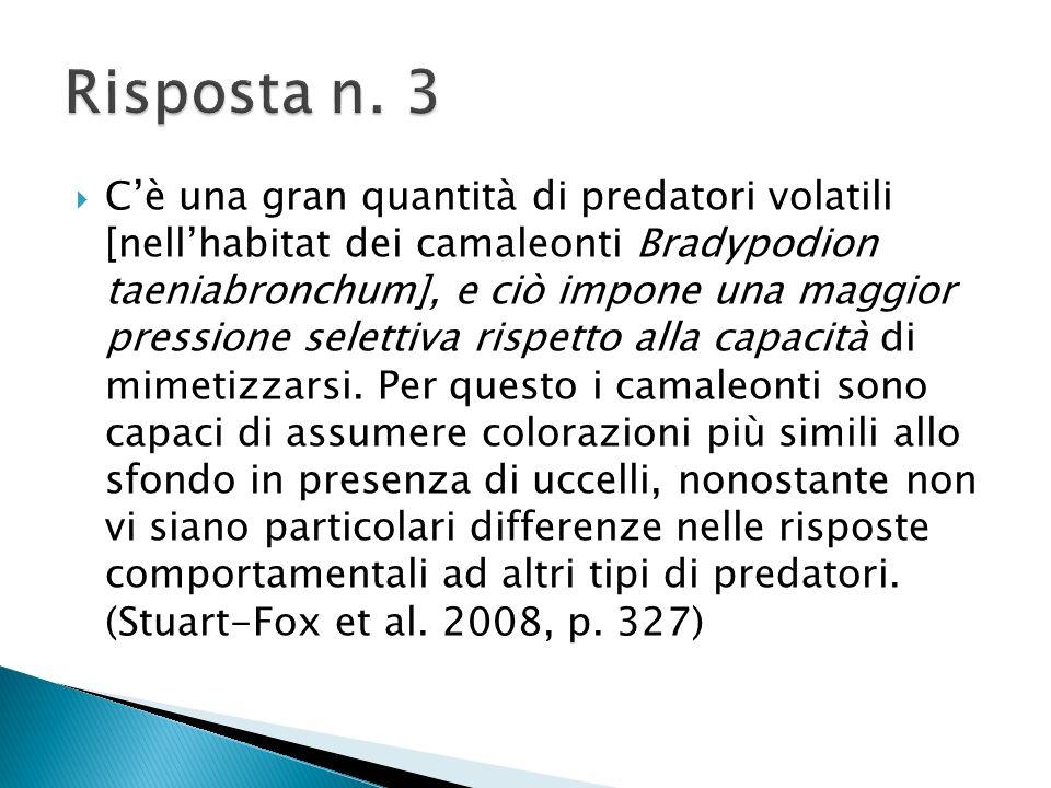 Risposta n. 3