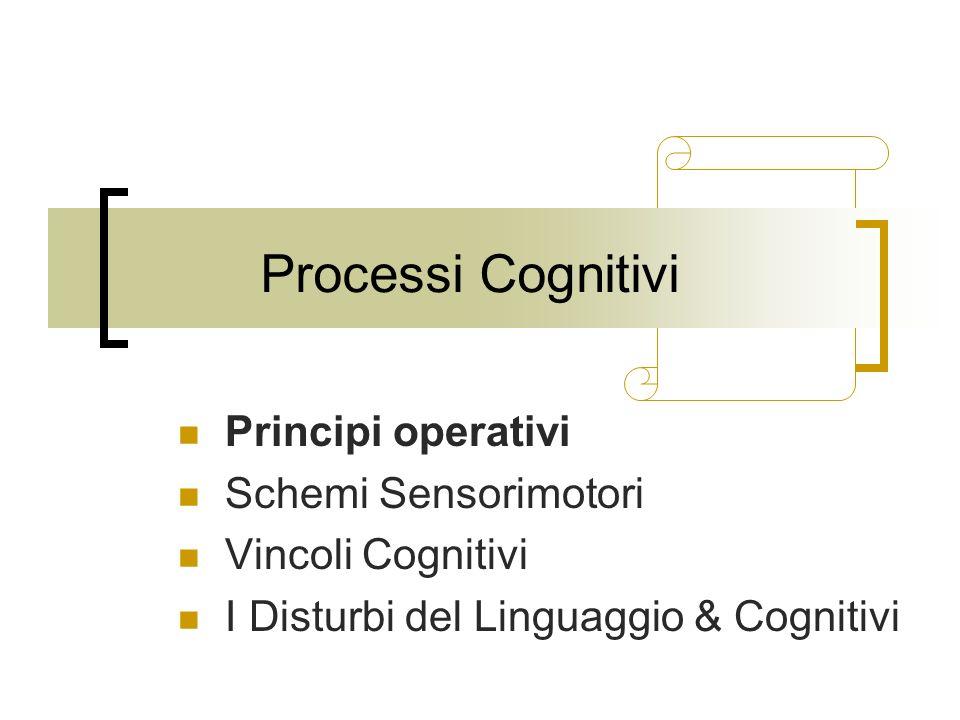 Processi Cognitivi Principi operativi Schemi Sensorimotori