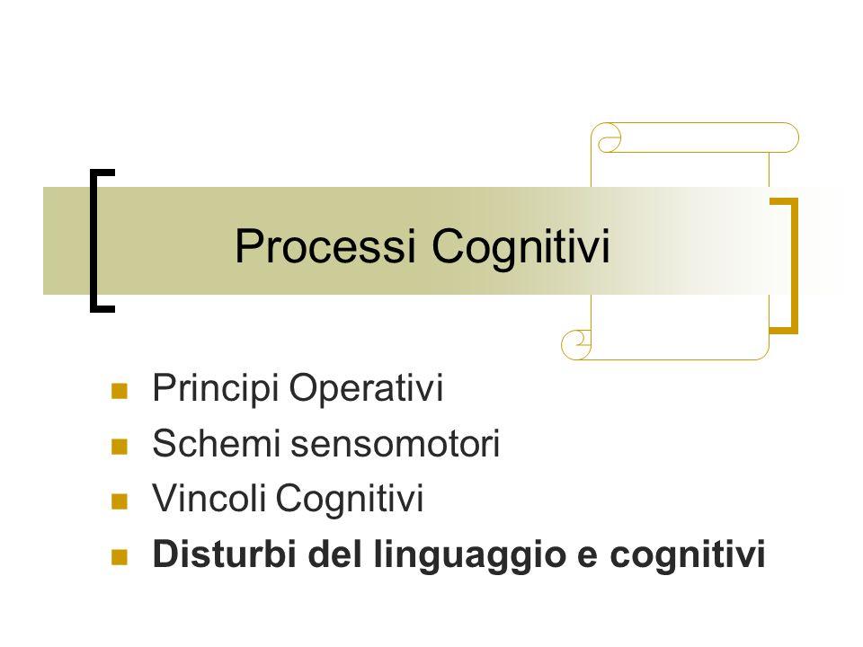 Processi Cognitivi Principi Operativi Schemi sensomotori