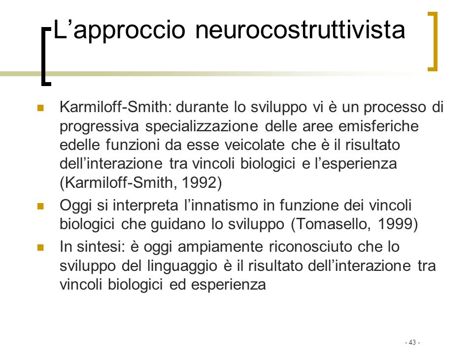 L'approccio neurocostruttivista
