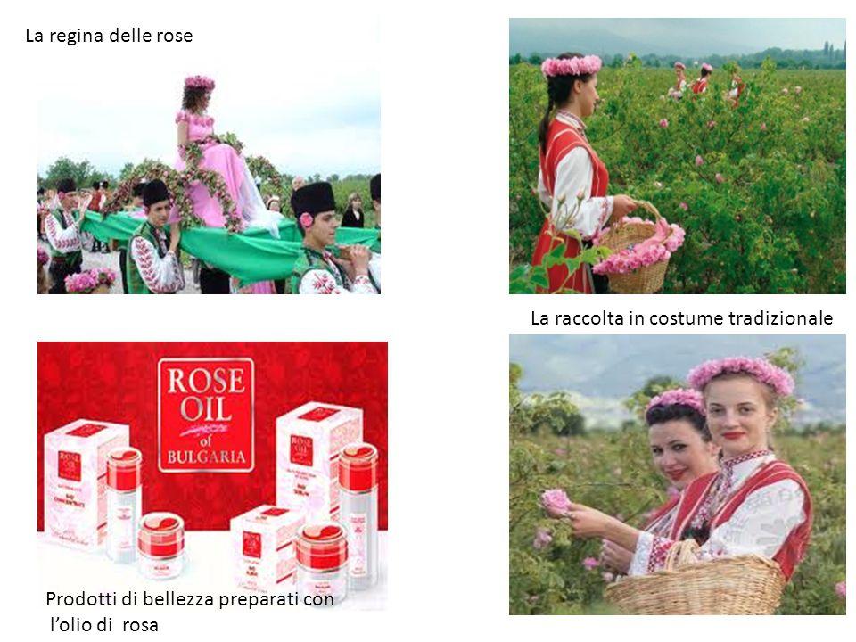 La regina delle rose La raccolta in costume tradizionale.