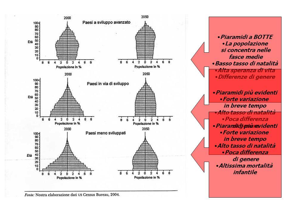 Basso tasso di natalità Piaramidi più evidenti Piaramidi più evidenti
