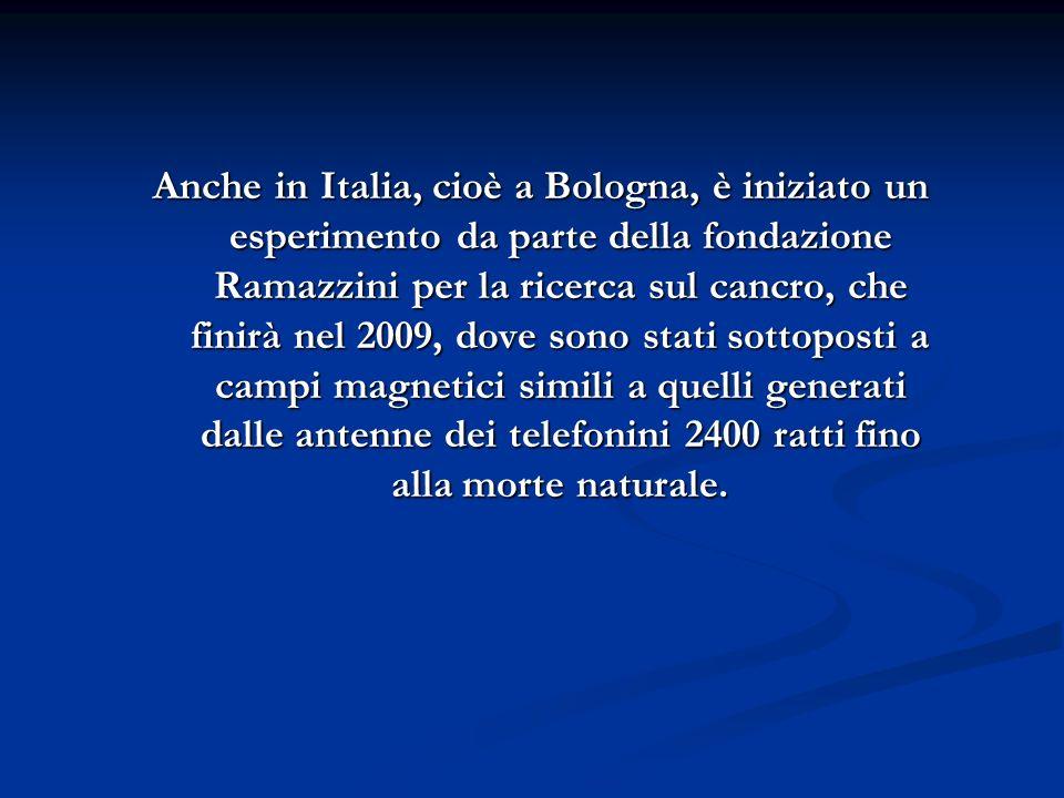 Anche in Italia, cioè a Bologna, è iniziato un esperimento da parte della fondazione Ramazzini per la ricerca sul cancro, che finirà nel 2009, dove sono stati sottoposti a campi magnetici simili a quelli generati dalle antenne dei telefonini 2400 ratti fino alla morte naturale.