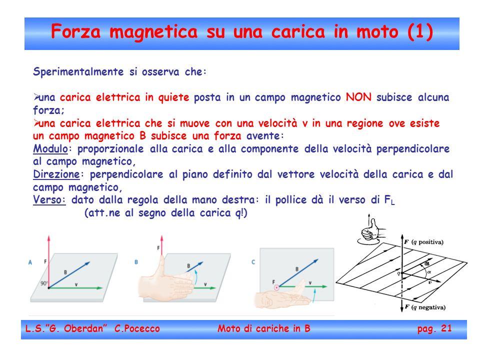 Forza magnetica su una carica in moto (1)