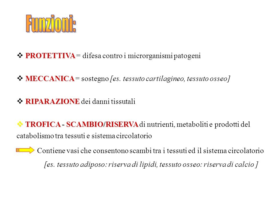 Funzioni: PROTETTIVA = difesa contro i microrganismi patogeni