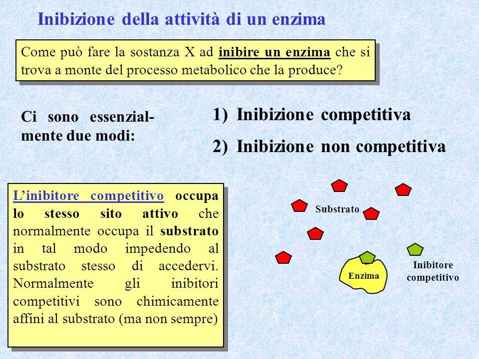 Inibizione della attività di un enzima