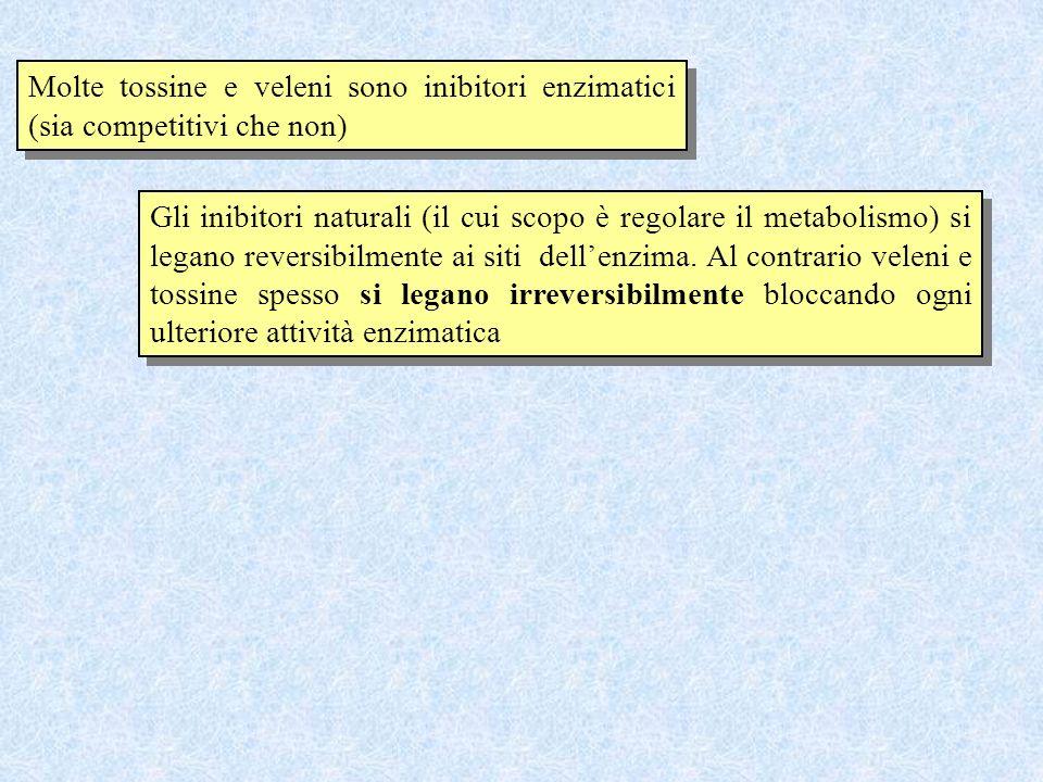 Molte tossine e veleni sono inibitori enzimatici (sia competitivi che non)