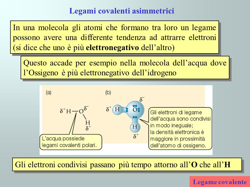 Legami covalenti asimmetrici