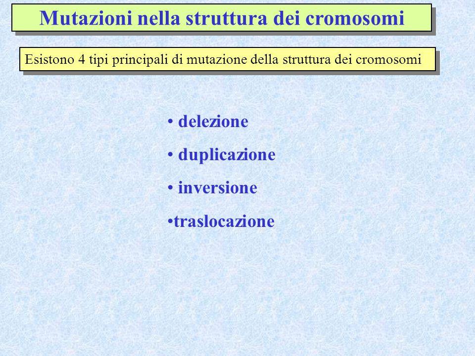 Mutazioni nella struttura dei cromosomi