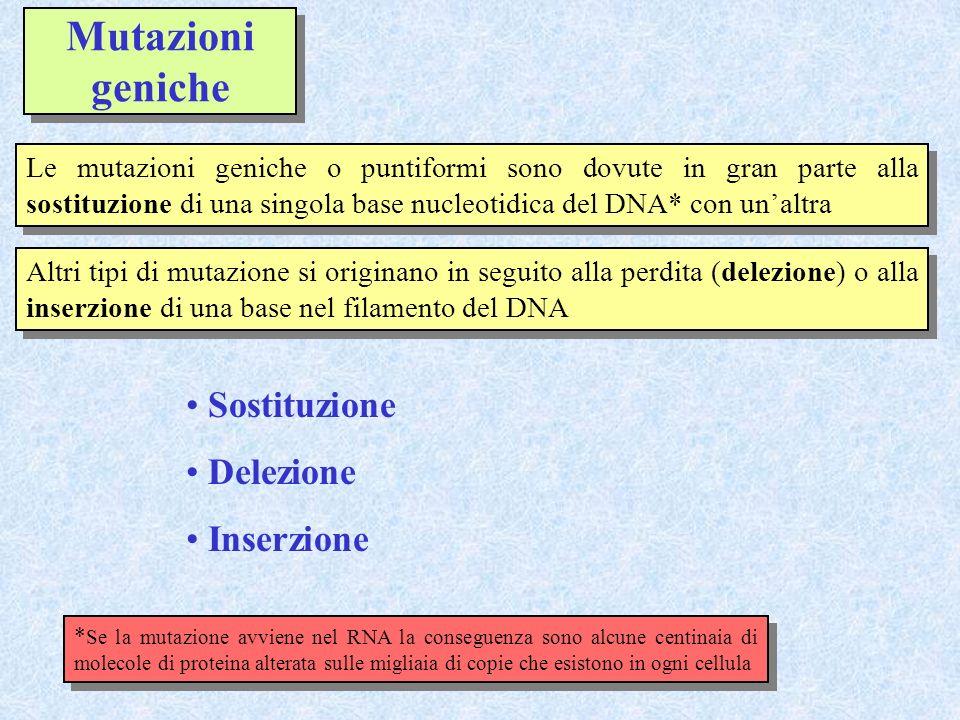 Mutazioni geniche Sostituzione Delezione Inserzione