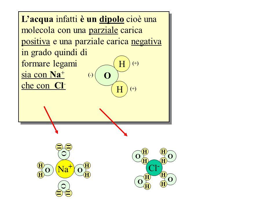L'acqua infatti è un dipolo cioè una molecola con una parziale carica positiva e una parziale carica negativa in grado quindi di