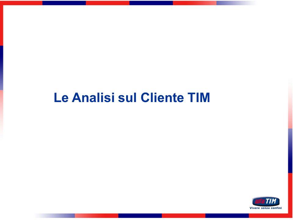 Le Analisi sul Cliente TIM
