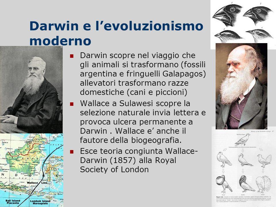 Darwin e l'evoluzionismo moderno
