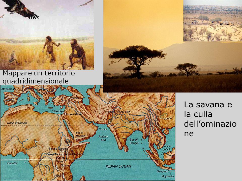 La savana e la culla dell'ominazione