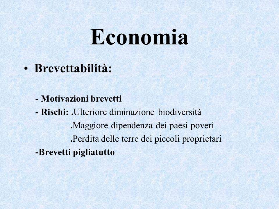 Economia Brevettabilità: - Motivazioni brevetti