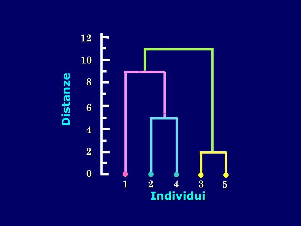 1 Individui Distanze 2 4 6 8 10 12 3 5