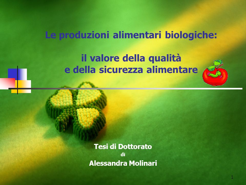 Tesi di Dottorato di Alessandra Molinari