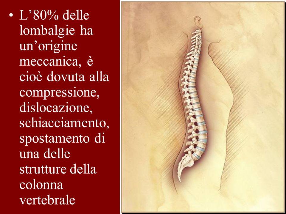 L'80% delle lombalgie ha un'origine meccanica, è cioè dovuta alla compressione, dislocazione, schiacciamento, spostamento di una delle strutture della colonna vertebrale