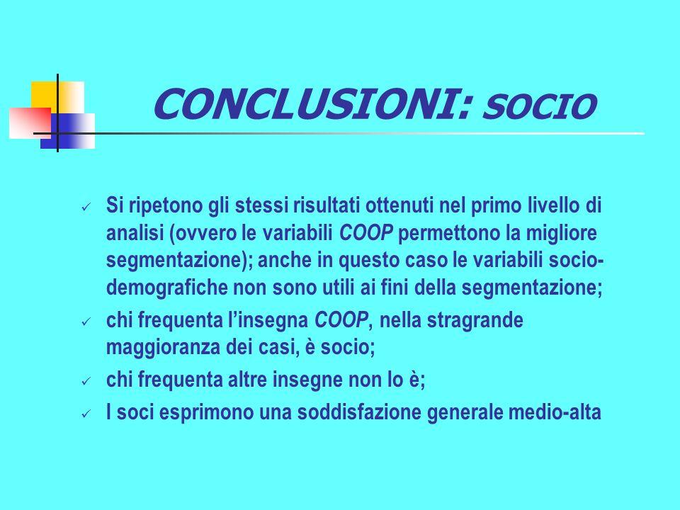 CONCLUSIONI: SOCIO