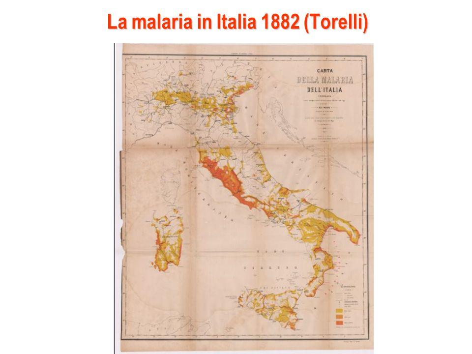 La malaria in Italia 1882 (Torelli)