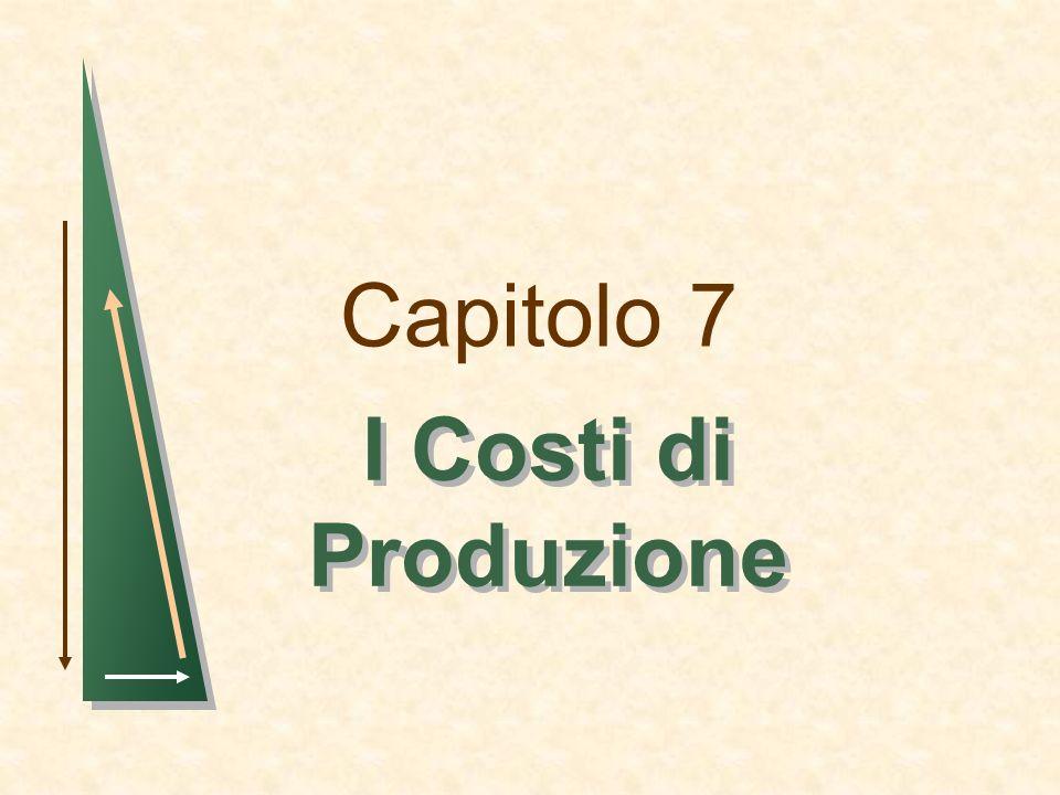 Capitolo 7 I Costi di Produzione 1