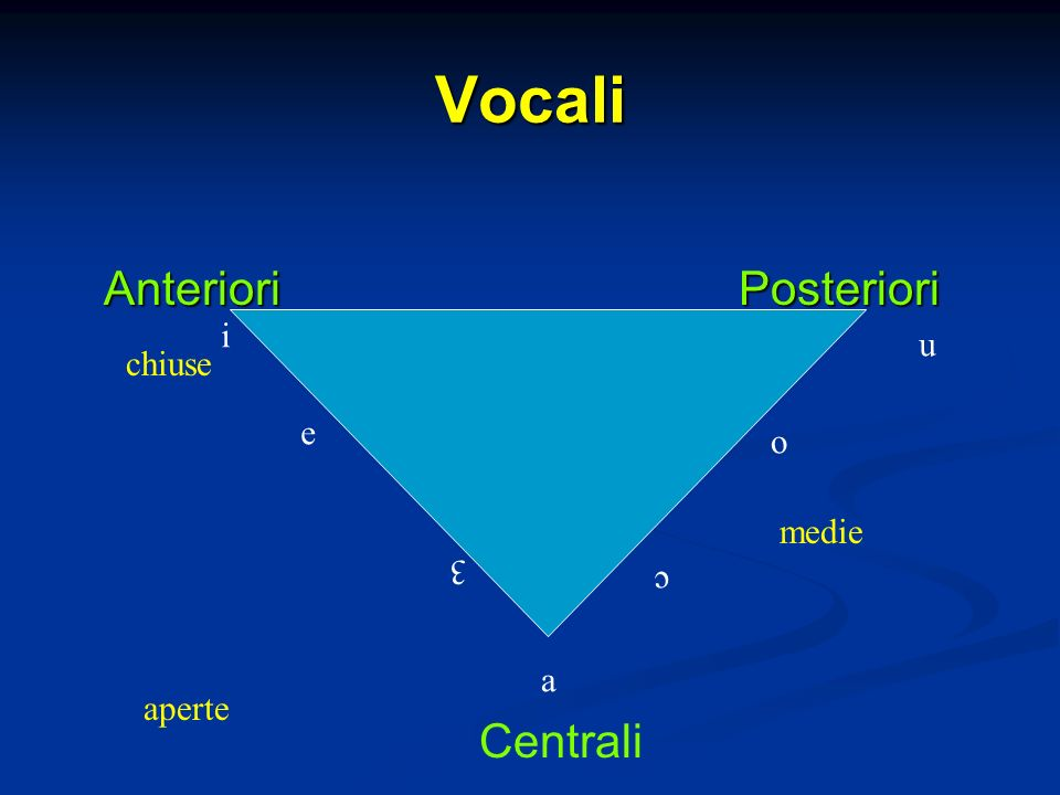 Vocali Anteriori Posteriori i u chiuse e o medie 3 c a aperte Centrali