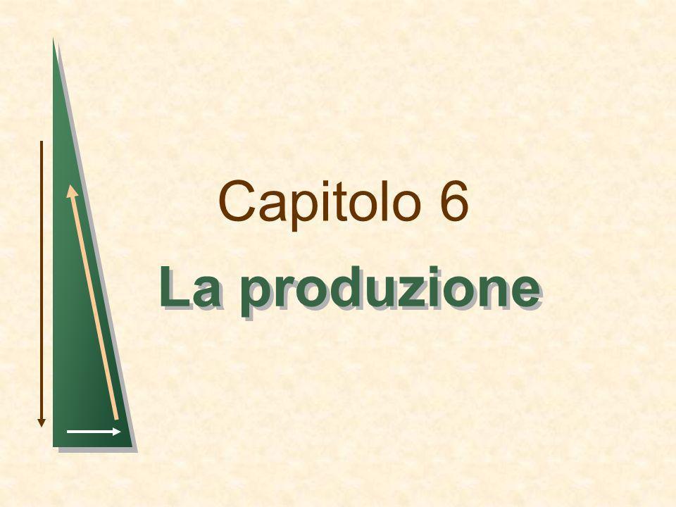 Capitolo 6 La produzione 1