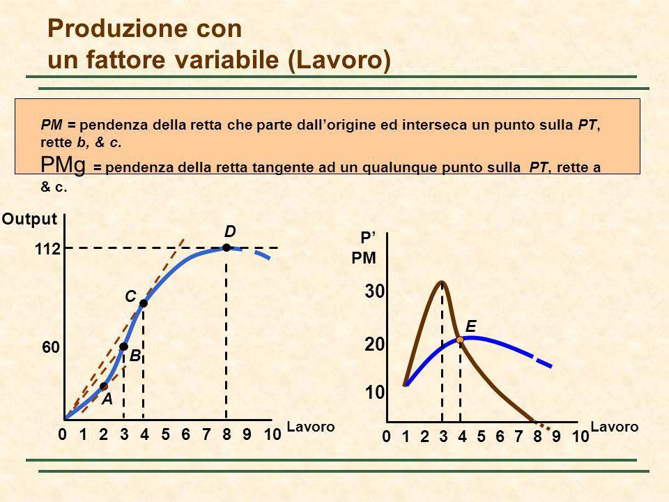 Produzione con un fattore variabile (Lavoro)