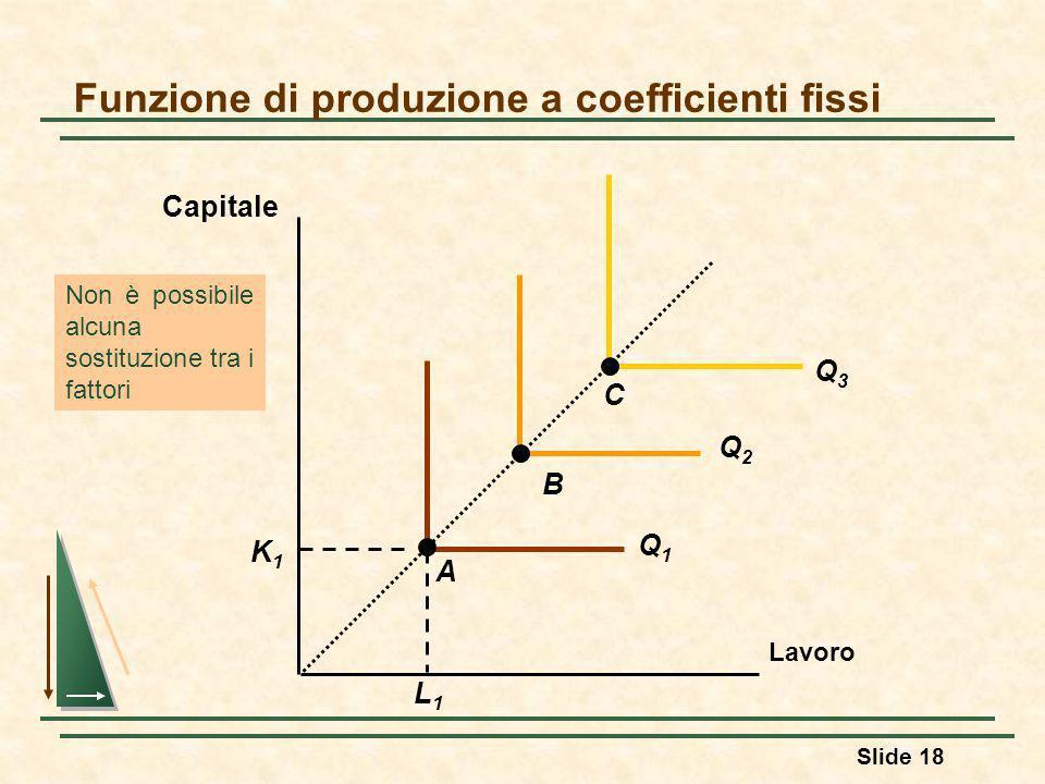 Funzione di produzione a coefficienti fissi