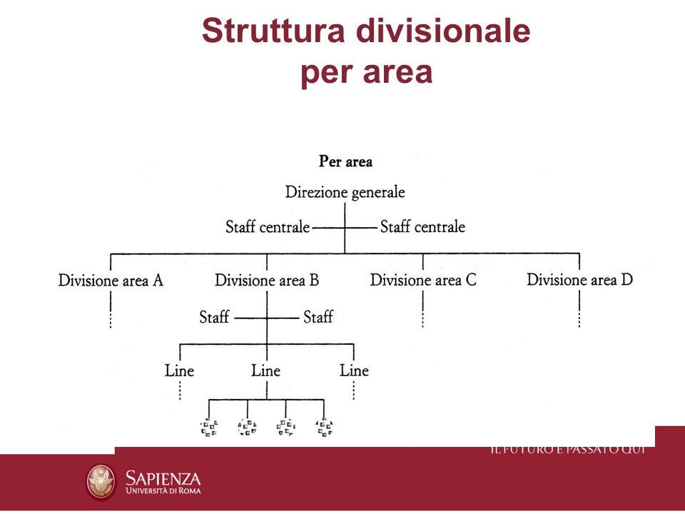 Struttura divisionale per area