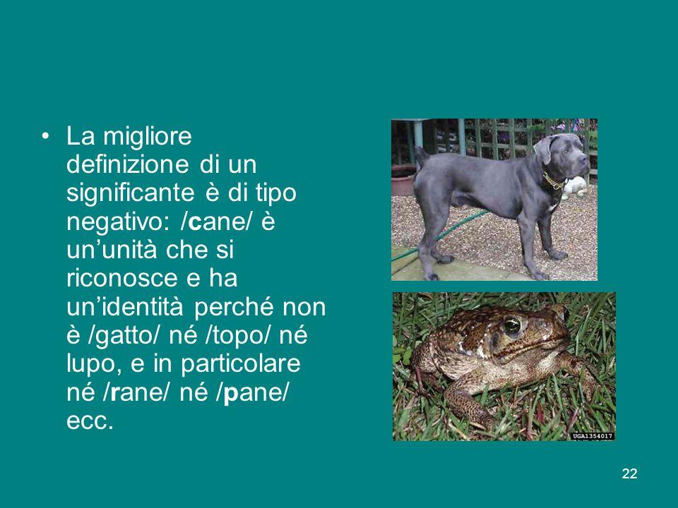 La migliore definizione di un significante è di tipo negativo: /cane/ è un'unità che si riconosce e ha un'identità perché non è /gatto/ né /topo/ né lupo, e in particolare né /rane/ né /pane/ ecc.