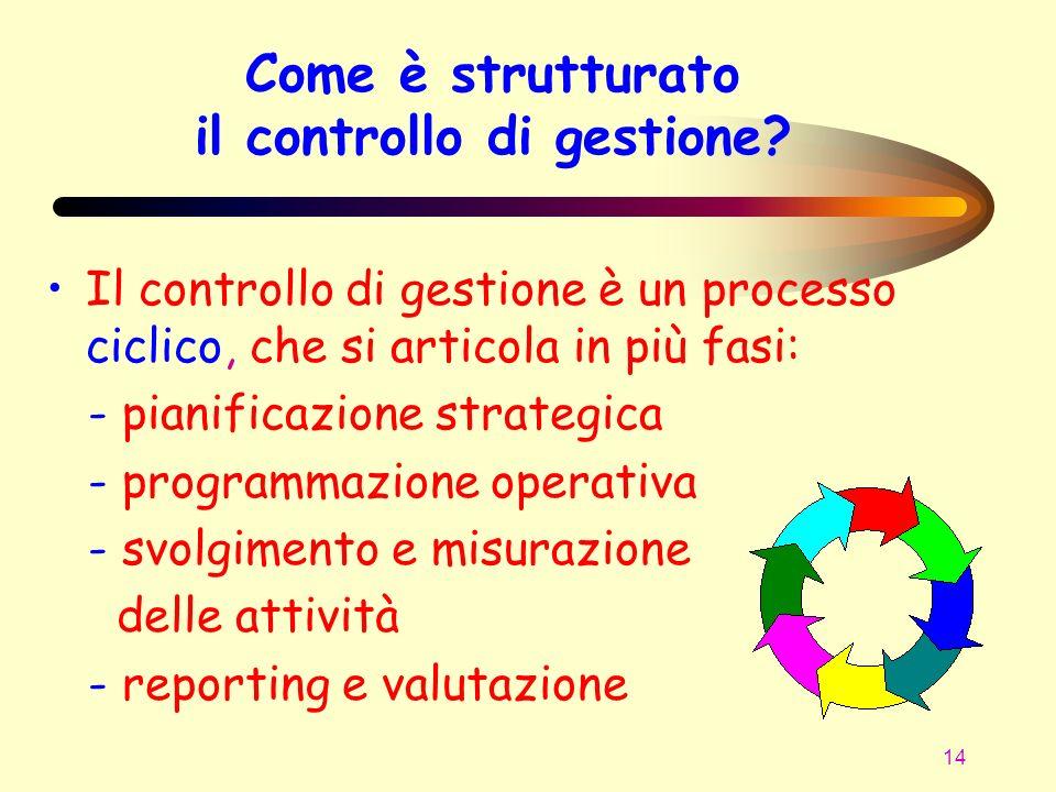 Come è strutturato il controllo di gestione