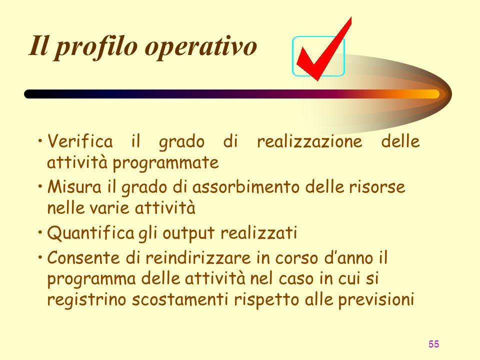 Il profilo operativo Verifica il grado di realizzazione delle attività programmate.