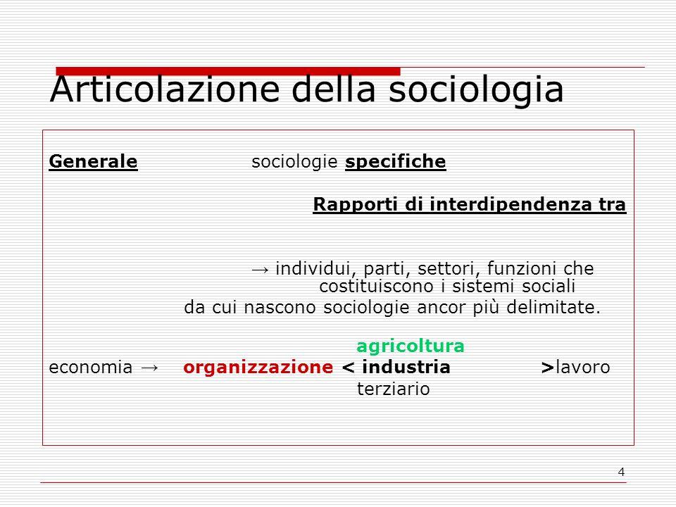 Articolazione della sociologia