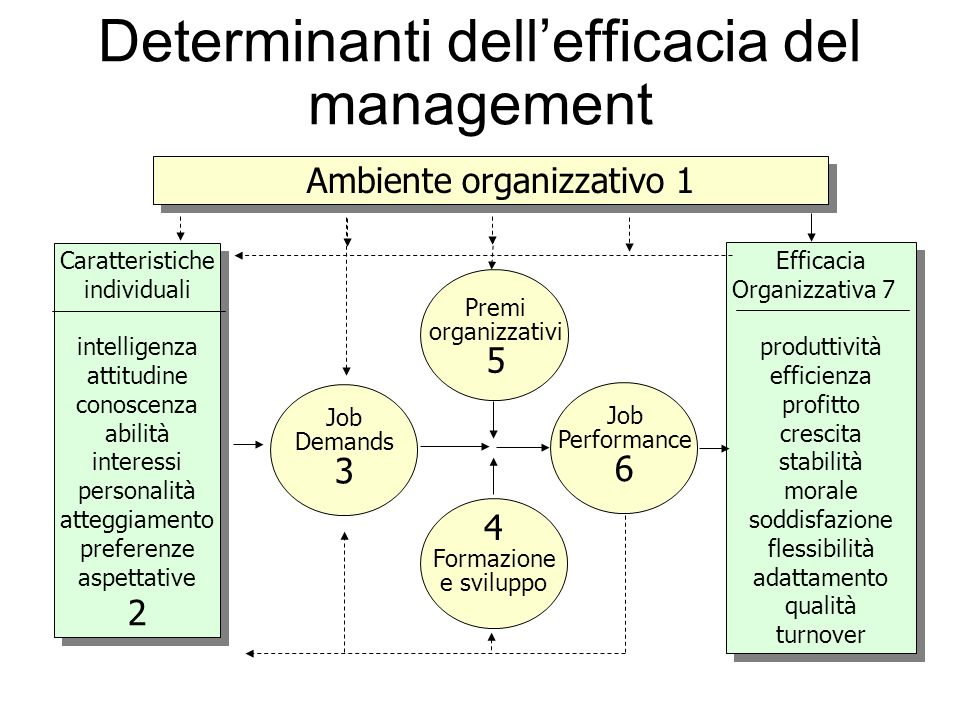 Determinanti dell'efficacia del management
