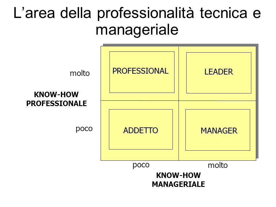 L'area della professionalità tecnica e manageriale