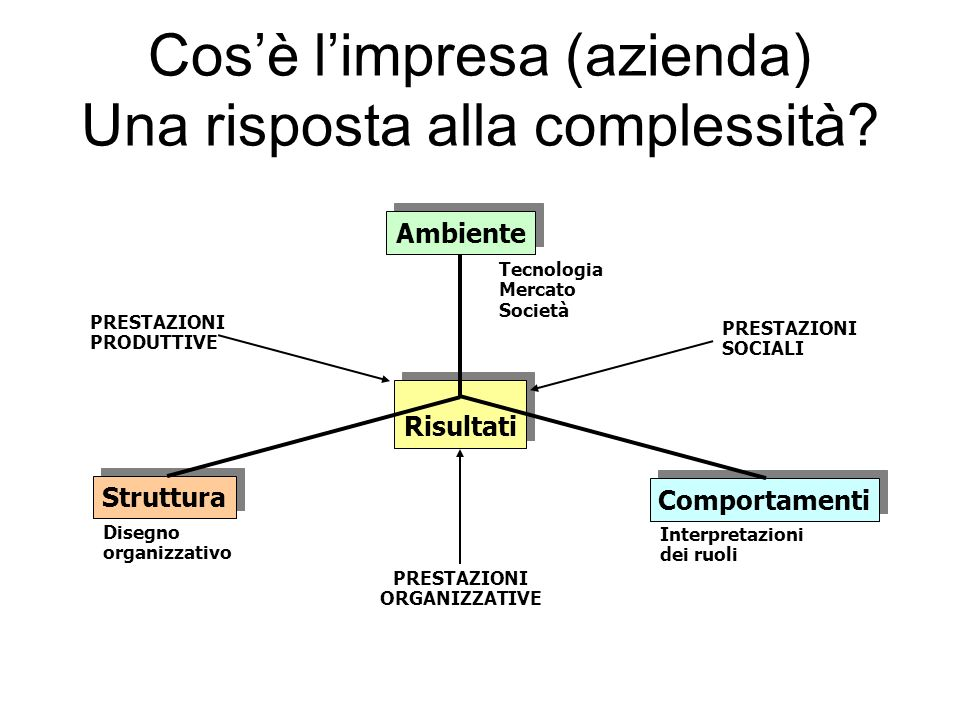 Cos'è l'impresa (azienda) Una risposta alla complessità