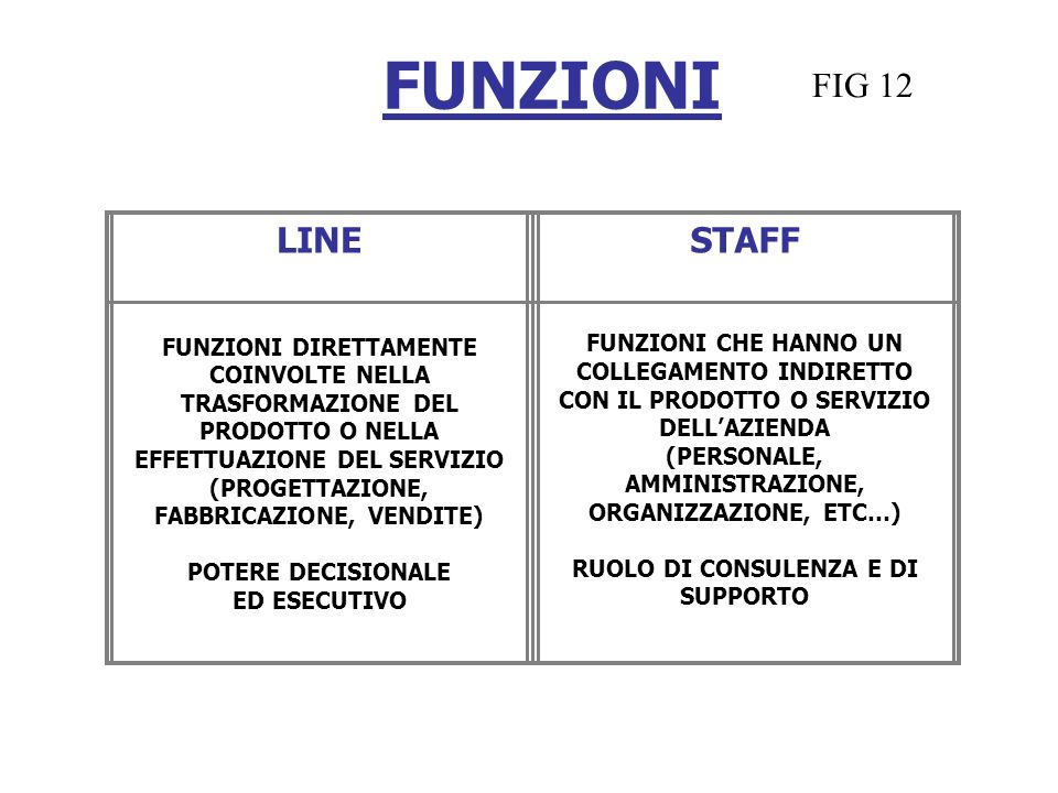 FUNZIONI FIG 12 LINE STAFF