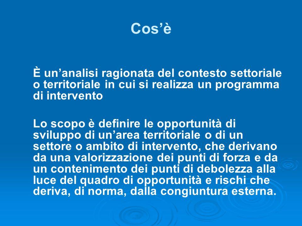 Cos'è È un'analisi ragionata del contesto settoriale o territoriale in cui si realizza un programma di intervento.