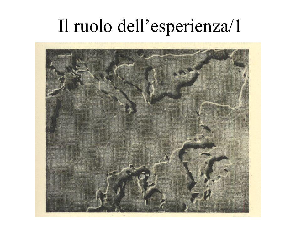 Il ruolo dell'esperienza/1