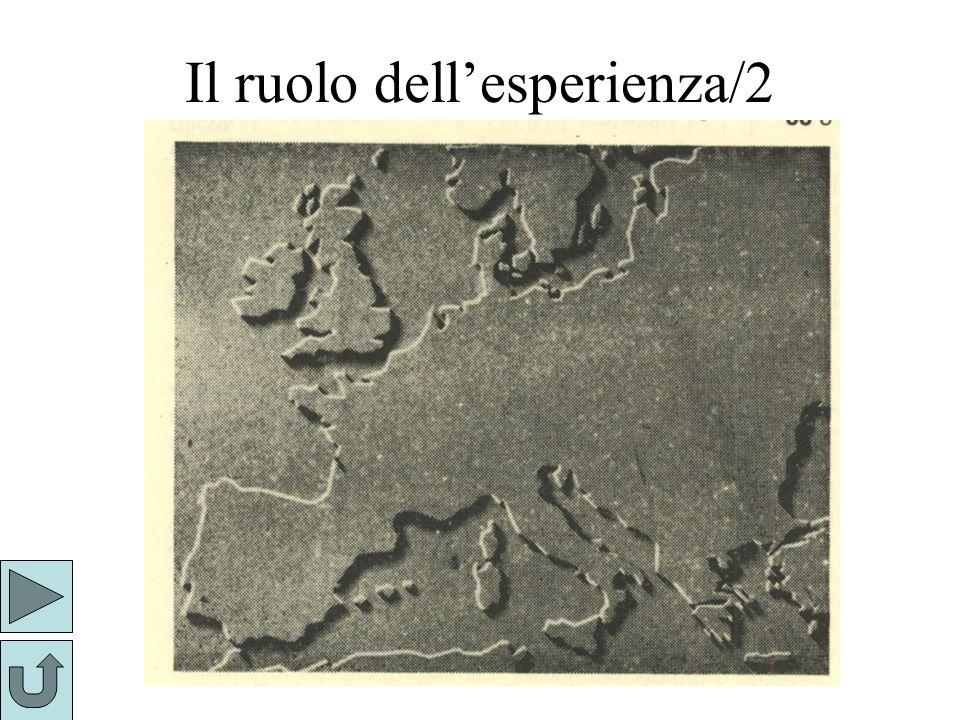 Il ruolo dell'esperienza/2