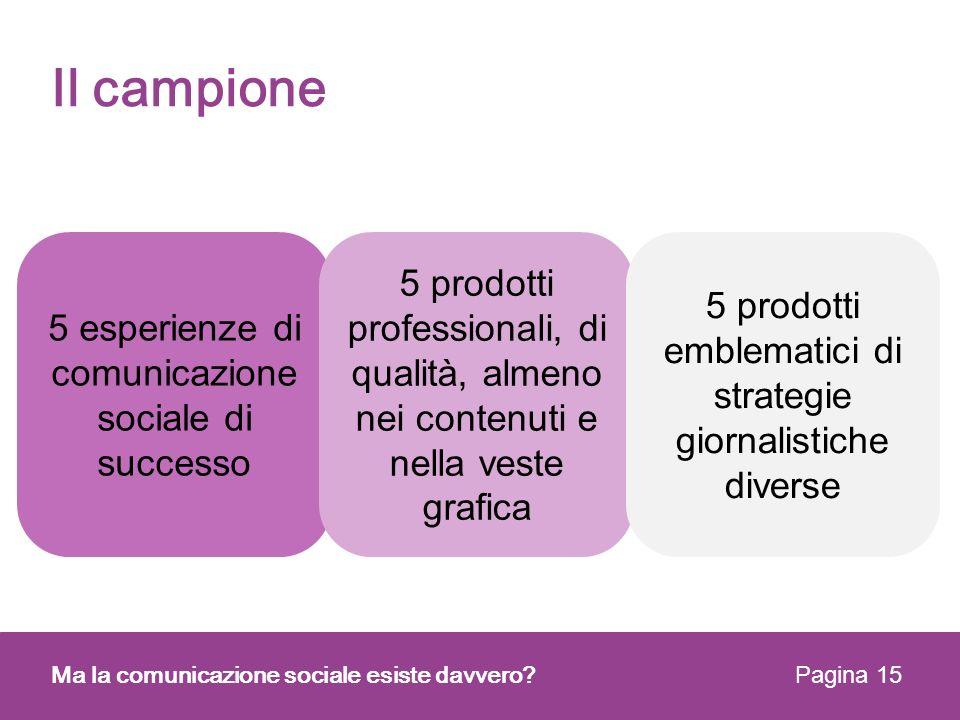 Il campione 5 esperienze di comunicazione sociale di successo. 5 prodotti professionali, di qualità, almeno nei contenuti e nella veste grafica.