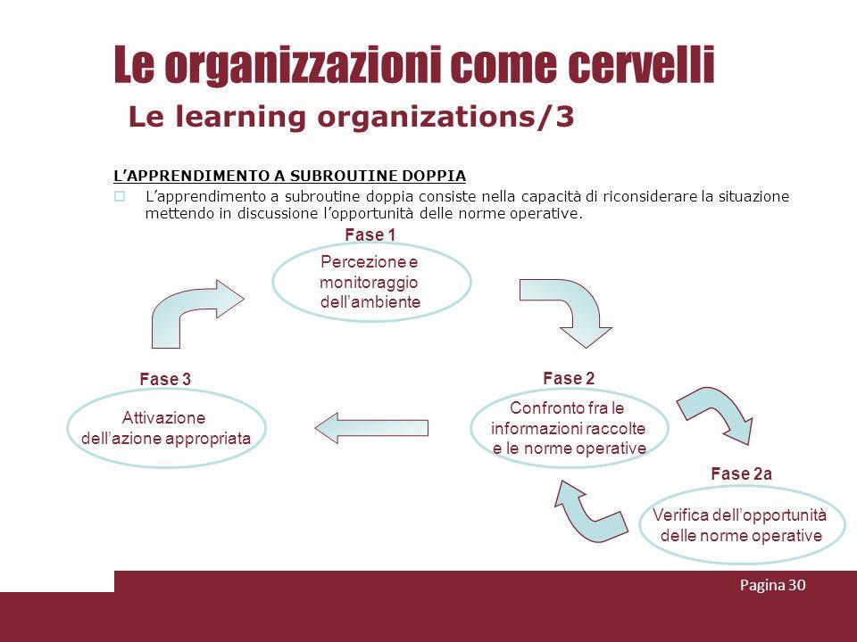 Le organizzazioni come cervelli