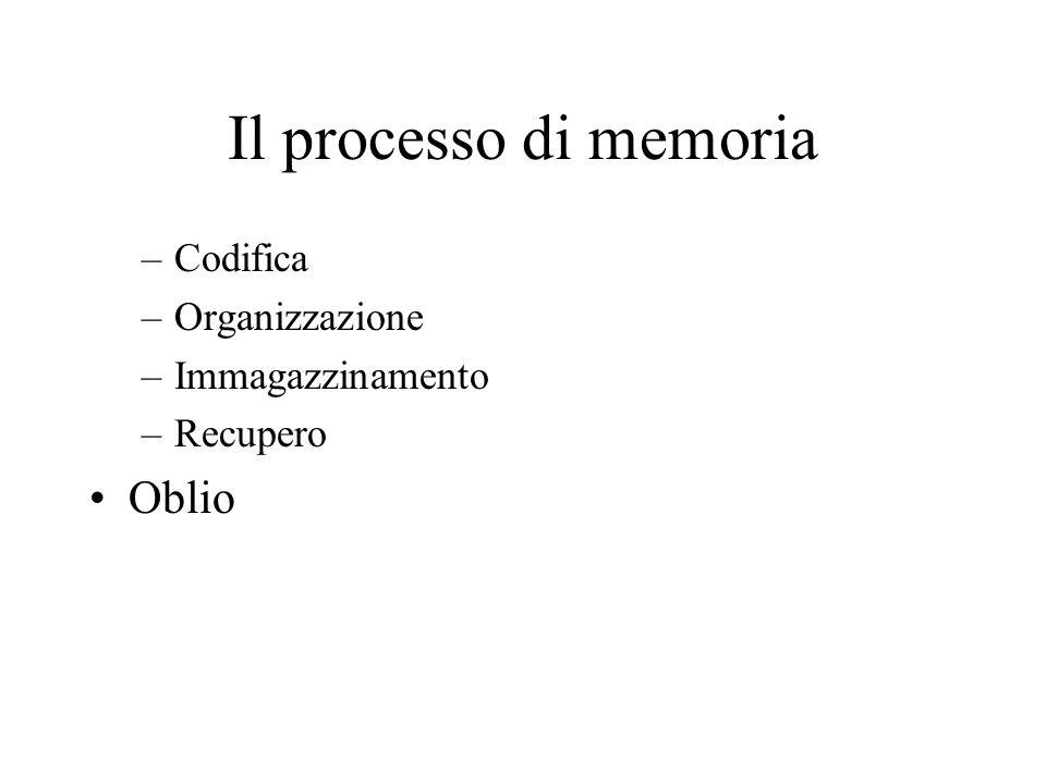 Il processo di memoria Oblio Codifica Organizzazione Immagazzinamento