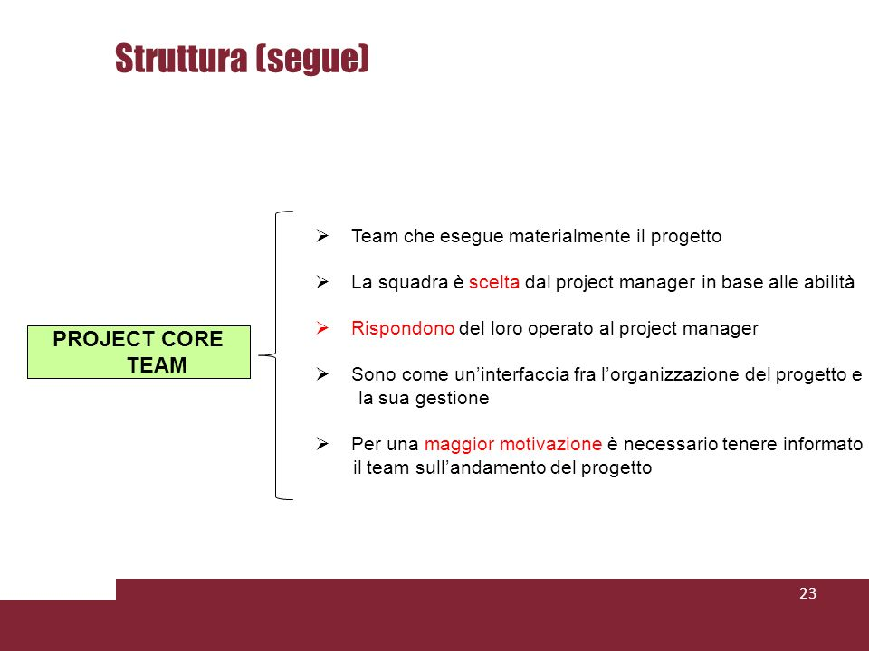 Struttura (segue) PROJECT CORE TEAM