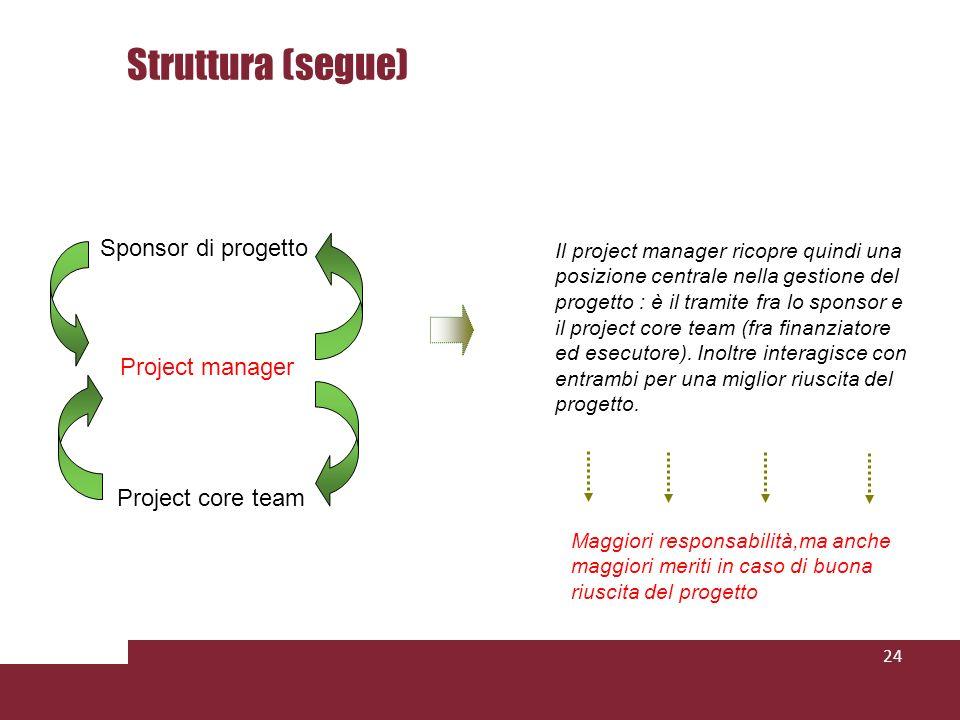Struttura (segue) Sponsor di progetto Project manager