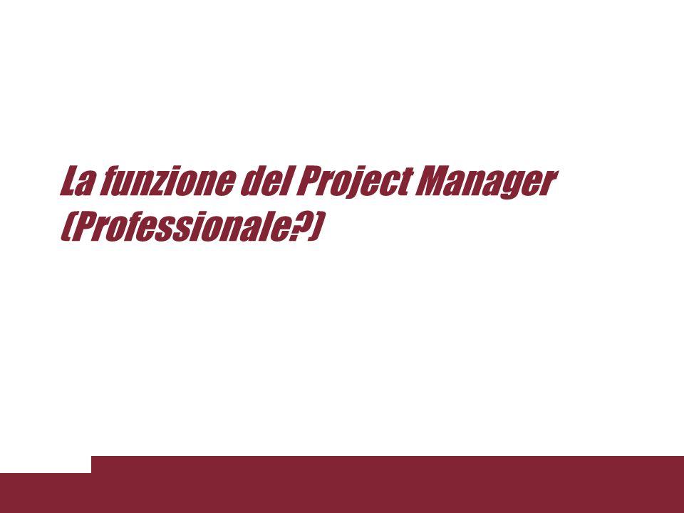 La funzione del Project Manager (Professionale )